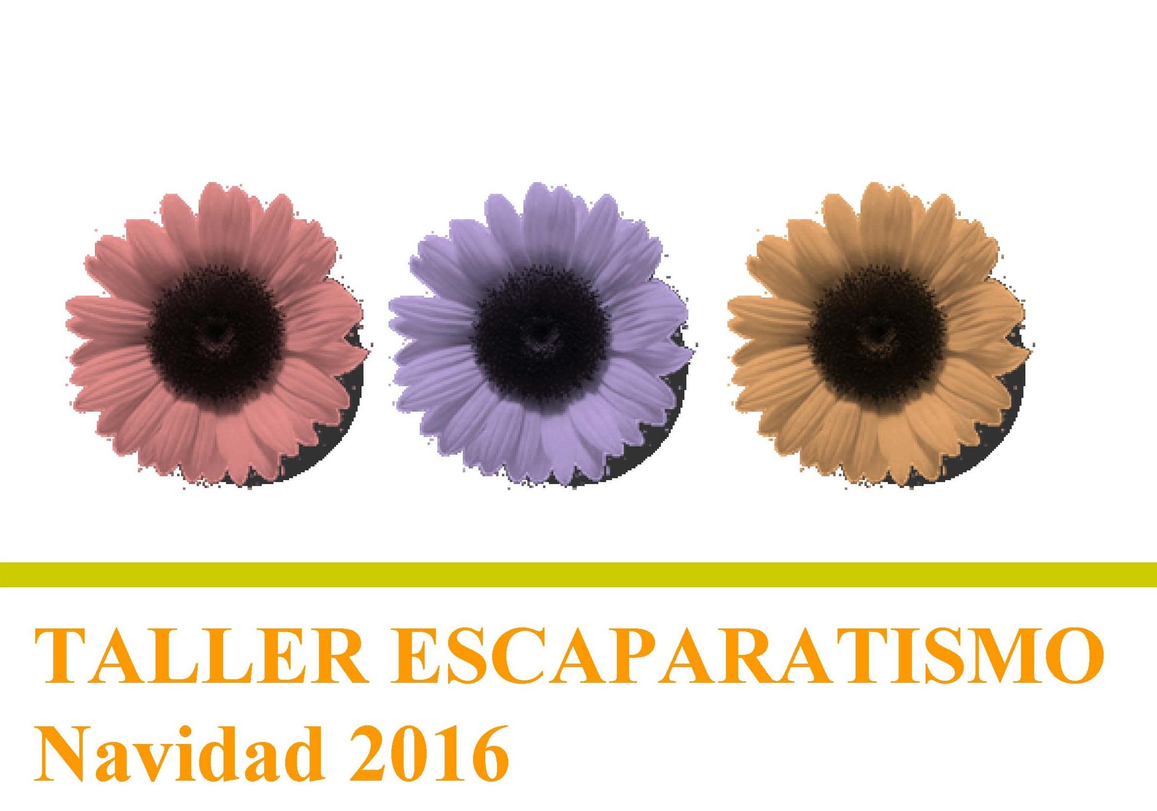 ÚLTIMAS PLAZAS PARA EL TALLER DE ESCAPARATISMO ORGANIZADO POR PROMESA